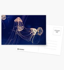 Silent dancers Postcards
