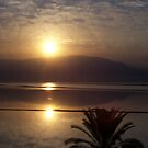 The Dead Sea by Ames