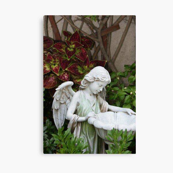Filled with Gods Gift of fresh rain; Wat Garden, La Mirada, CA USA Canvas Print