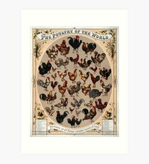 Antique Infographic - The Poultry of the World (1868) Art Print