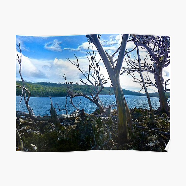 MT FIELD ~ SCENES & SCENERY ~ Lake Fenton by tasmanianartist Poster
