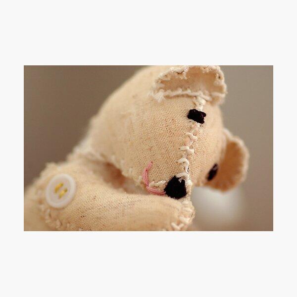 The Happy Bear Photographic Print