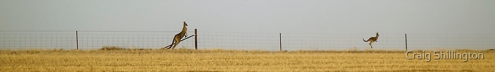 Two Along The Fence Line by Craig Shillington