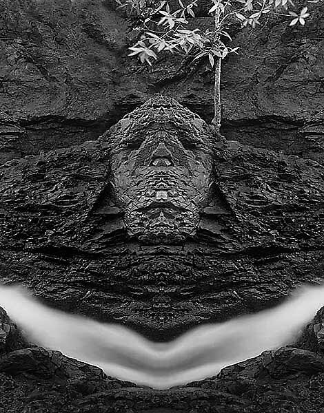 Face in nature #90015 by graynomad