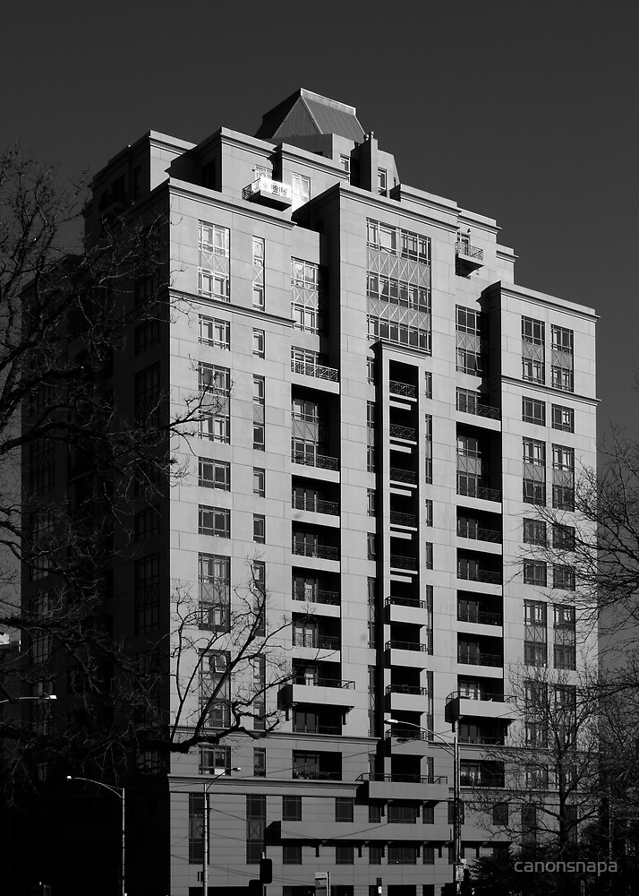 building  by canonsnapa