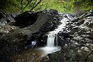 Lava Falls II, Maui by Michael Treloar
