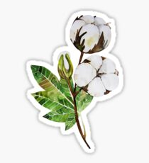 Watercolor cottom branch Sticker