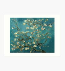 Blossoming Almond Tree, famous post  impressionism fine art oil painting by Vincent van Gogh.  Kunstdruck