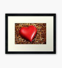 Fragile Heart Framed Print