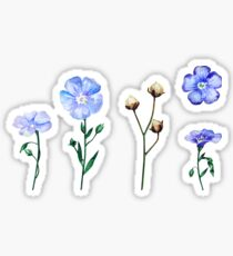Pegatina Conjunto de flores de lino de acuarela