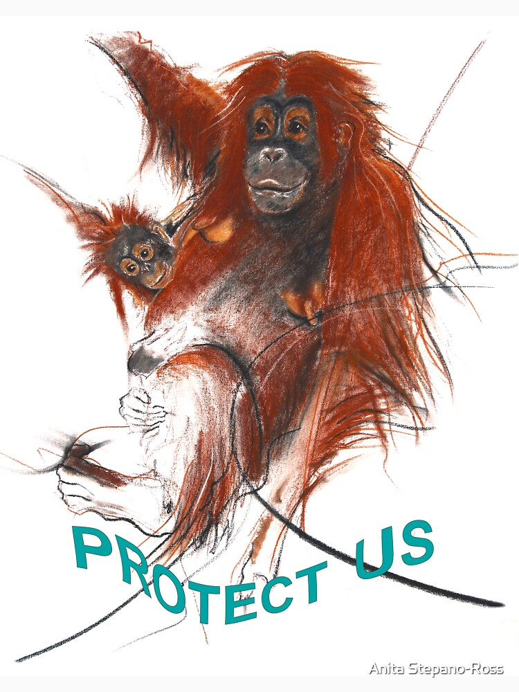 protect us by anarte