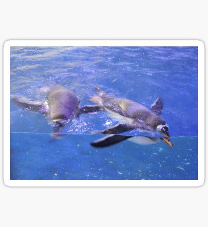 Swimming In Cerulean Blue Sticker