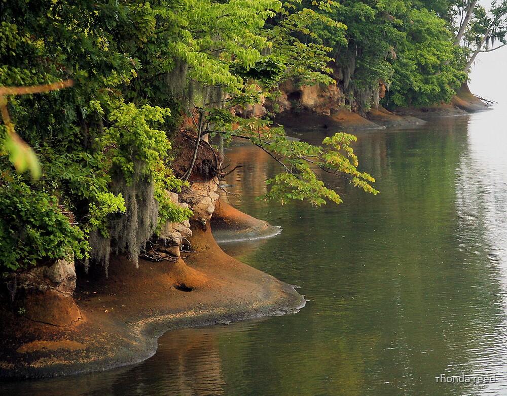 The Waters' Edge by rhonda reed