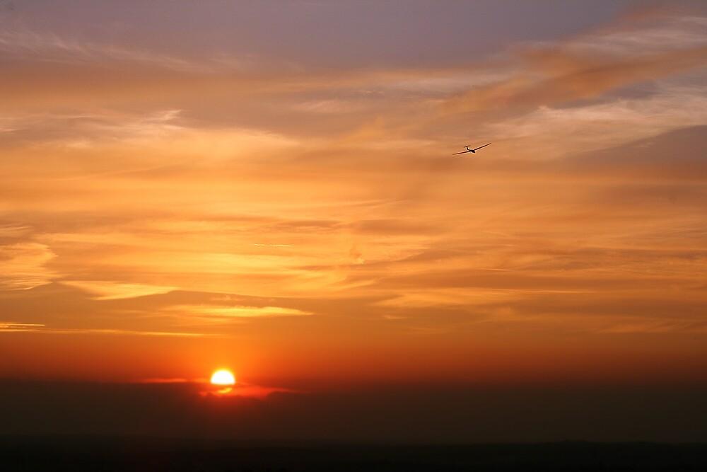 Glider Sunset by Moth