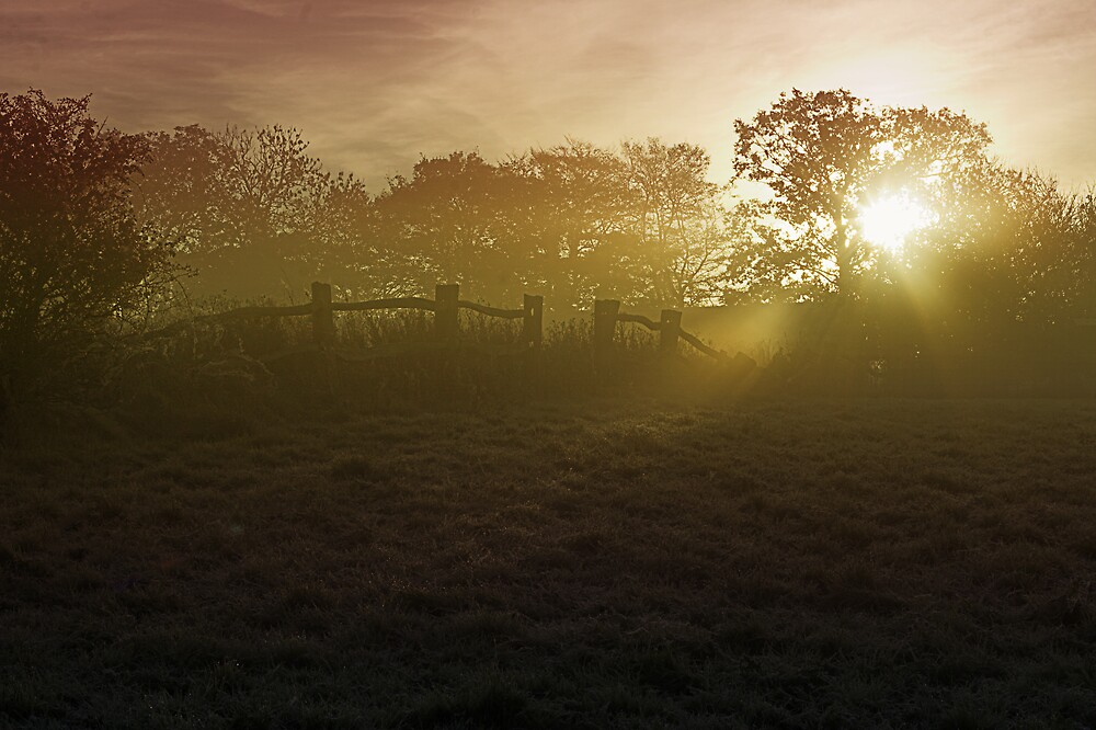 Farm Mist by Moth