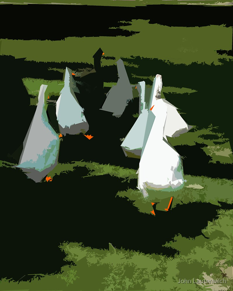 """White Duck Designs"" by John Lautermilch"