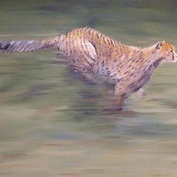 Cheetah running by Housh68