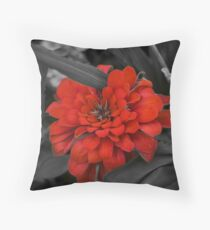 Gray brilliance. Throw Pillow