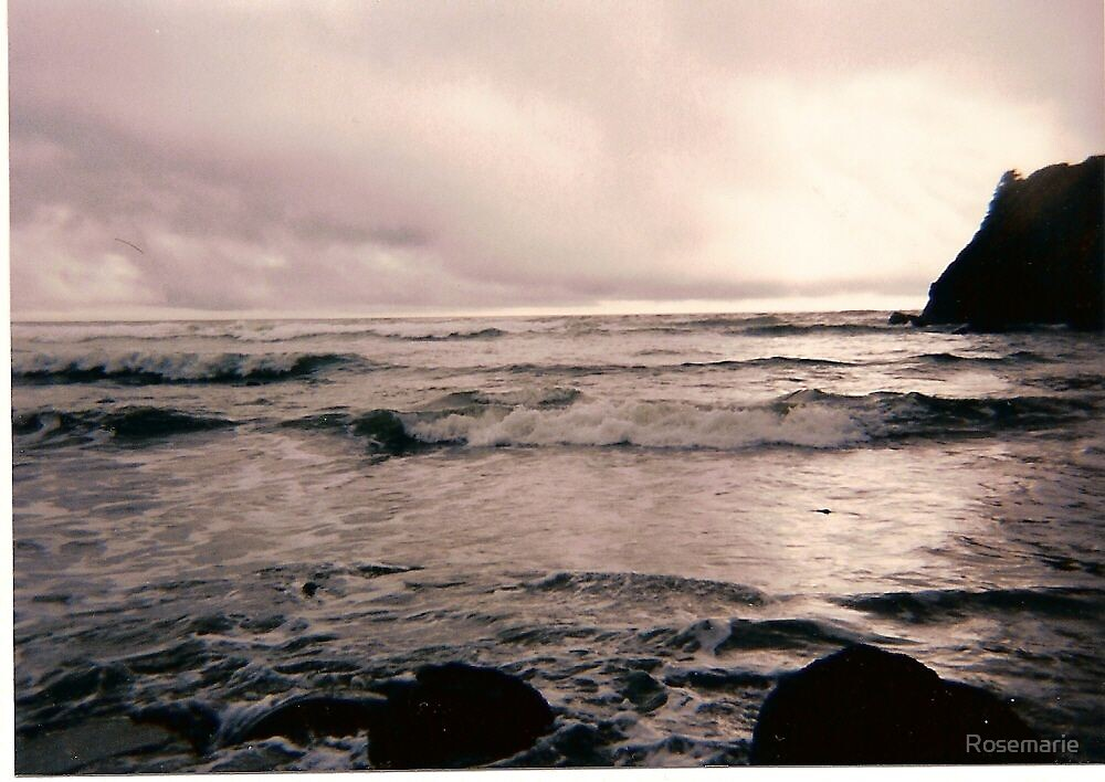 Oregon Coast by Rosemarie