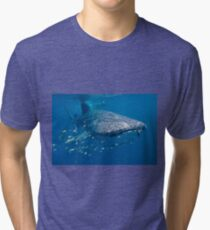 Whale Shark, Ningaloo Reef, Western Australia Tri-blend T-Shirt
