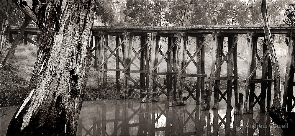 quantong rail bridge by Andrew Cowell