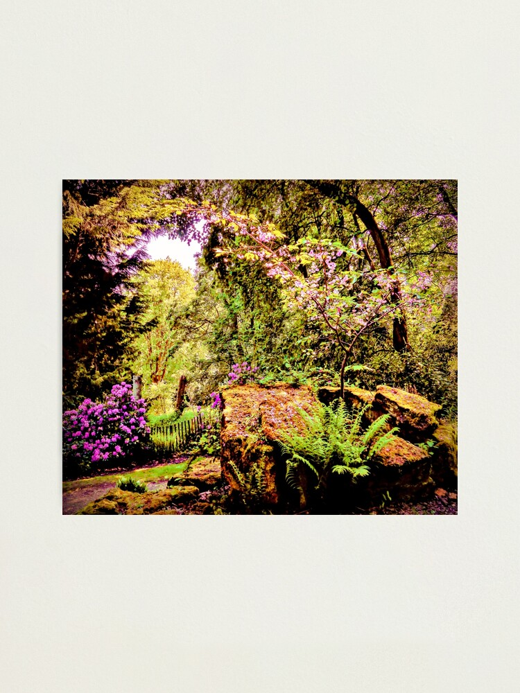 Alternate view of Essence of Nature Photographic Print