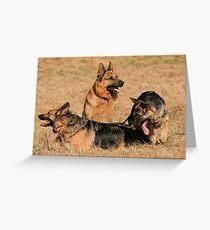 German shepard family Greeting Card