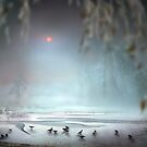 Winter Mist by Igor Zenin