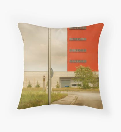 Italy Industrial Throw Pillow