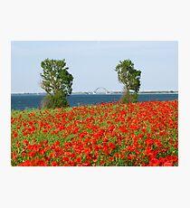 Baltic Photographic Print