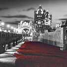 Tower Bridge and the Ceramic Poppies BW by Colin  Williams Photography