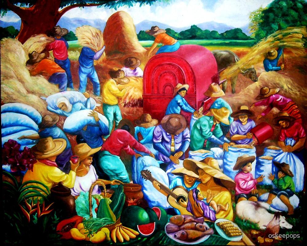 Harvest time,Nueva Viscaya by oskeepops