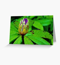 Blooming Bulb Greeting Card