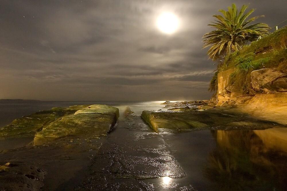 Moonlit path - Cronulla by Daniel  Speranza