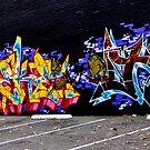 vain by Bruce  Dickson