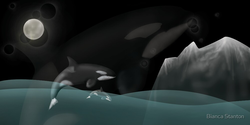 Whales by Bianca Stanton
