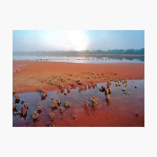 Misty Morning Salt Pan, Cue, WA Photographic Print