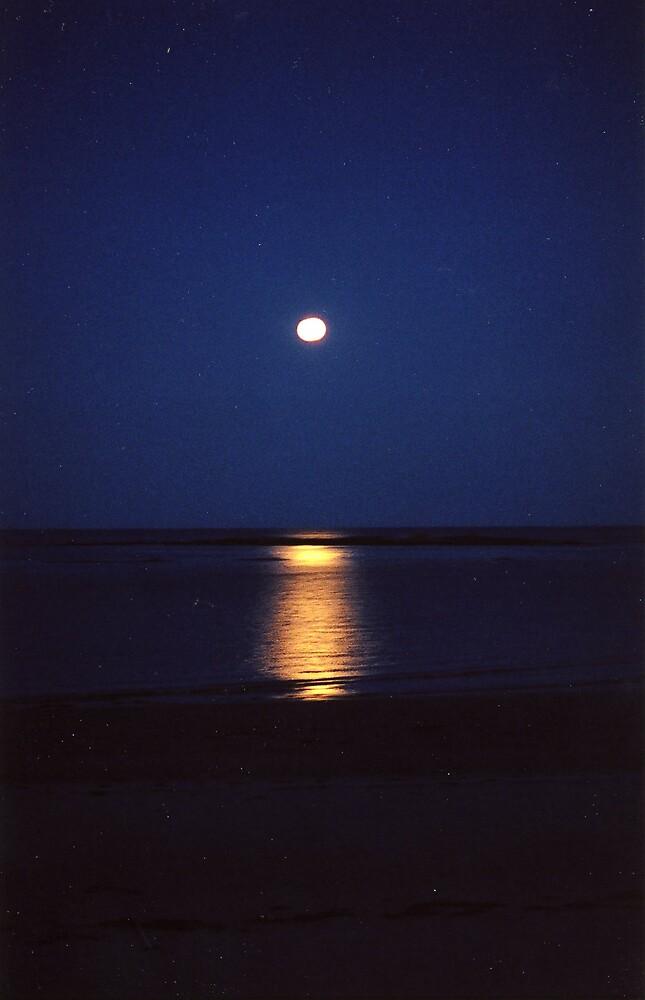 Moon light over Goose rocks beach by amadge