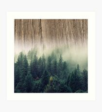 Misty Forest Wood Art Print