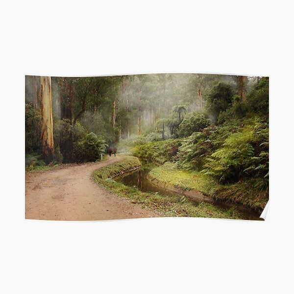 A walk in the forest Poster