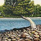 Lake Sinclair by Jason Moad