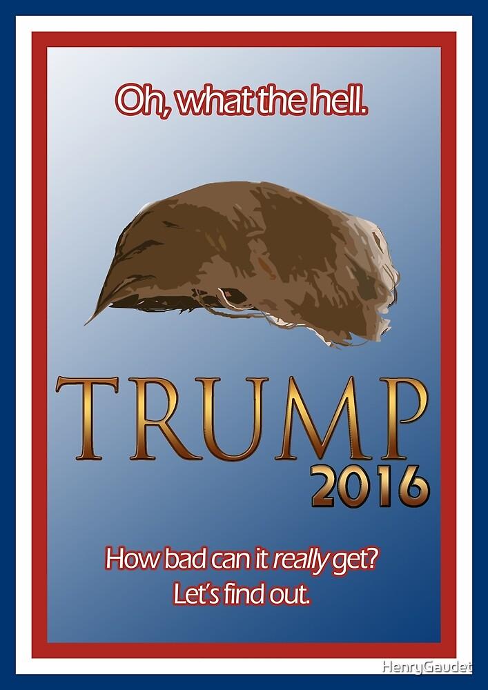Trump 2016 by HenryGaudet
