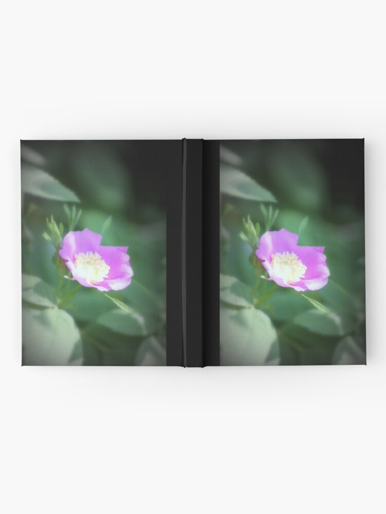 Alternate view of Old fashioned pink rose, near Trojan pond, Oregon Hardcover Journal