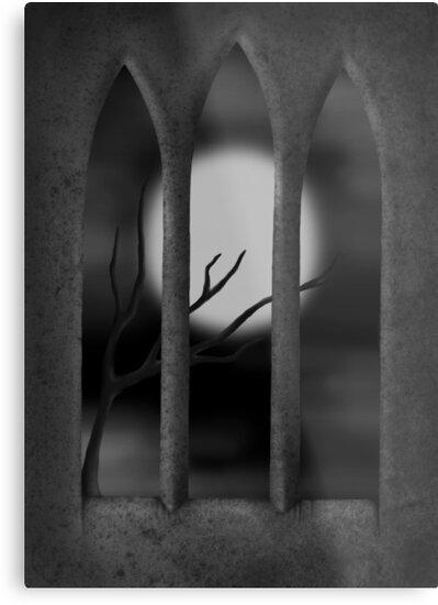 Solitude by veronikagred