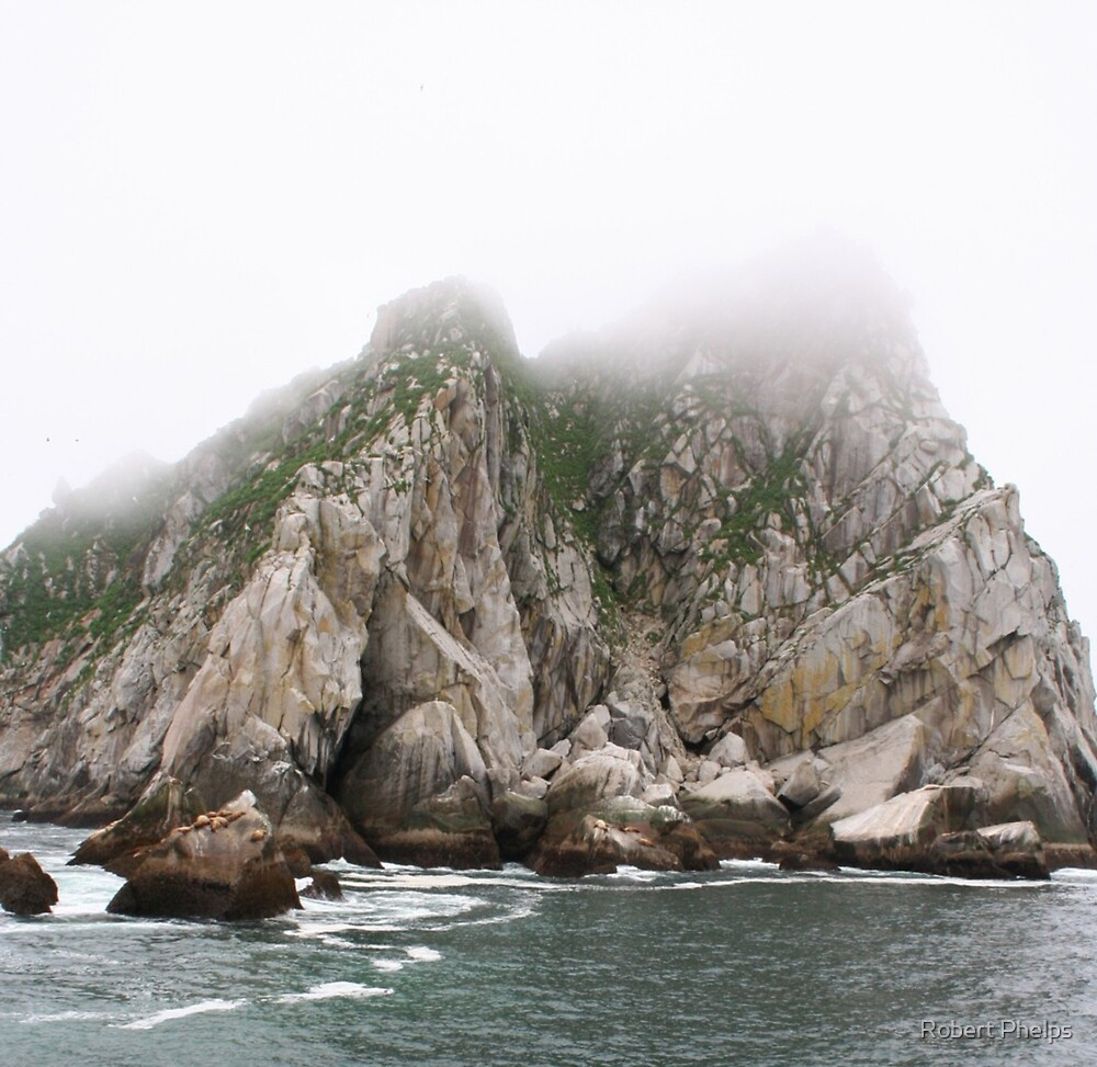 Island in the fog by Robert Phelps