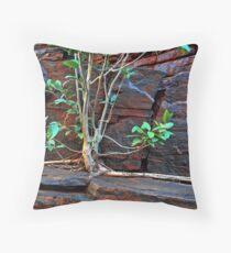Fig Detail, Joffre Gorge, Karijini NP Throw Pillow