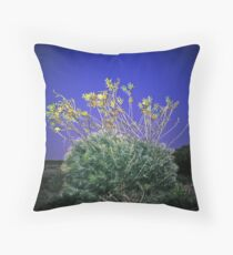Illuminated Grevillea Throw Pillow