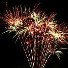 Fireworks 5 by Janine  Hewlett