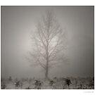 Winter Solstice by Aaron .