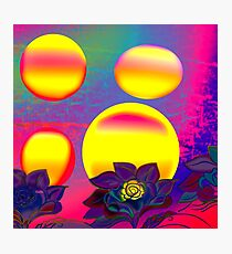 Sunset Moonlight Flower Rose Abstract Photographic Print